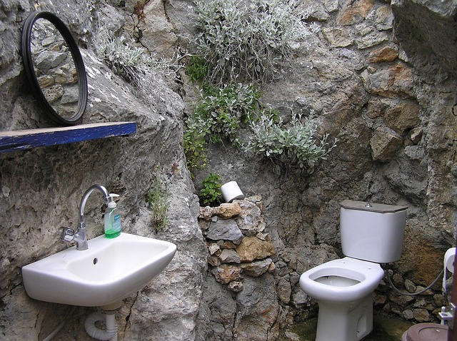 Bathroom Toilet Types
